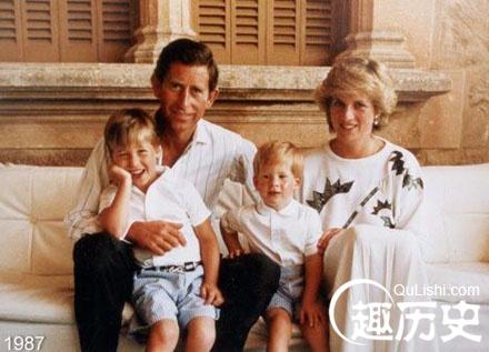 戴安娜的儿子 已逝的戴安娜王妃的儿子资料介绍