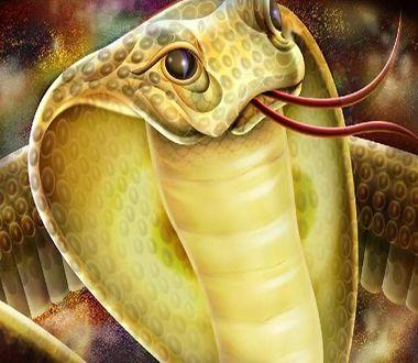 女人梦见黄蛇是胎梦吗